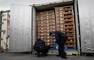 CBP officers at the port of Philadelphia use mobile non-intrusive inspection technology to scan import containers for contraband.  Photo by James Tourtellotte, CBP file photo