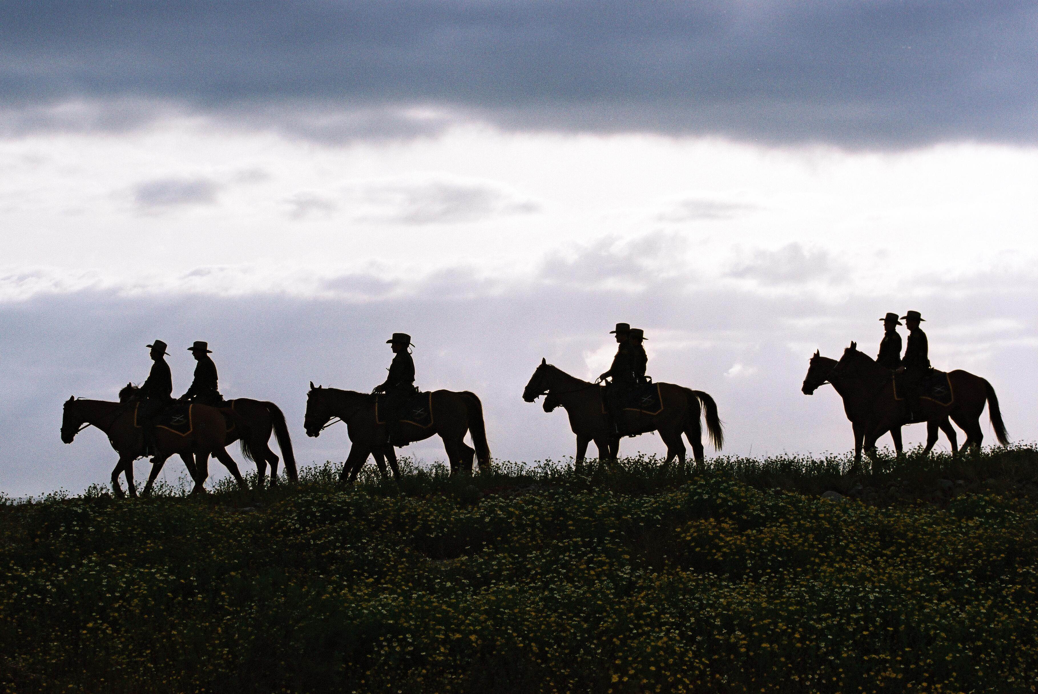 U.S. Border Patrol utilizes horses in difficult terrain to ensure the safety of the nation's border.