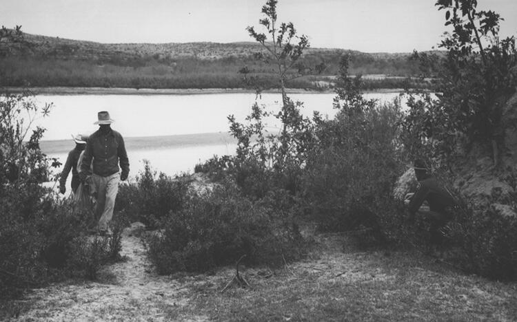 Border Patrol Inspector concealed in brush prepared to apprehend illegal Mexican entrants on trail leading from river crossing near Del Rio, Texas, March 12, 1956.