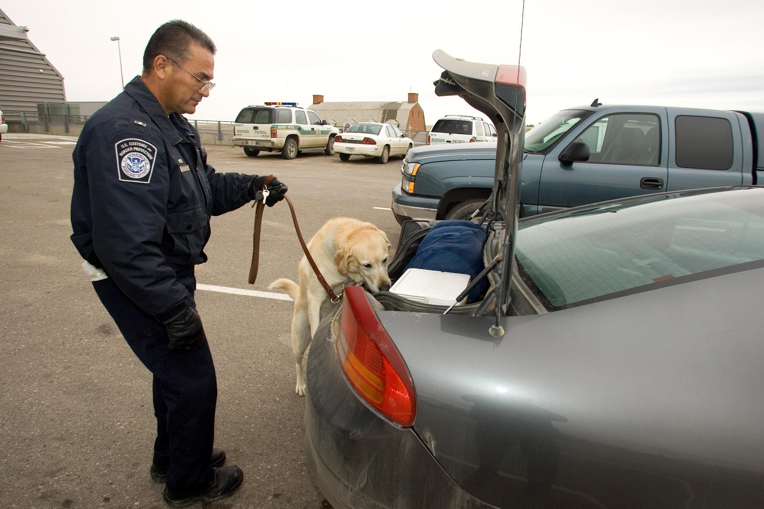 CBP K-9 officer runs a car selected for secondary exam.