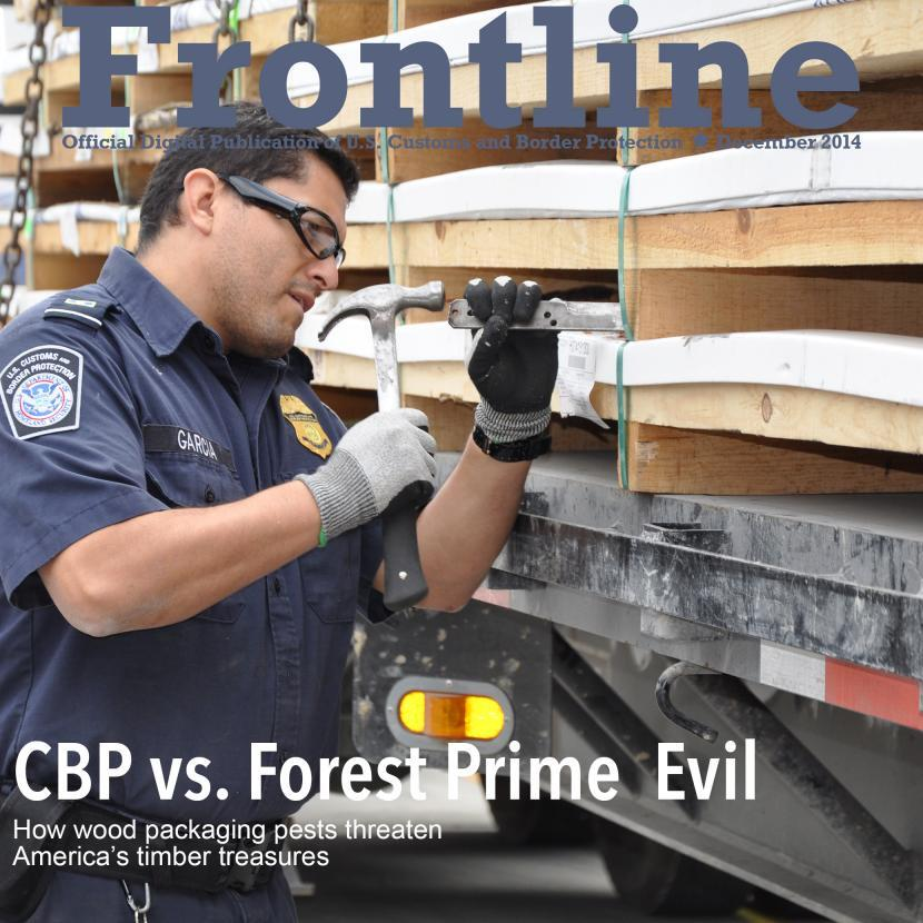 Photo of CBP agriculture specialist examing pallets for invasive pests
