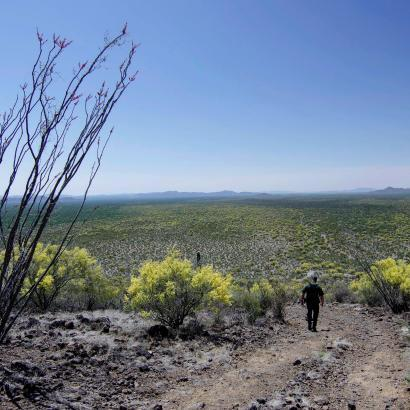 Photo of a Border Patrol agent descending a desert hill