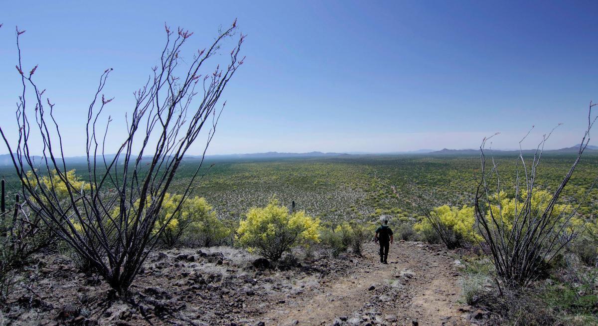 Photo of a Border Patrol agent descending a desert hill