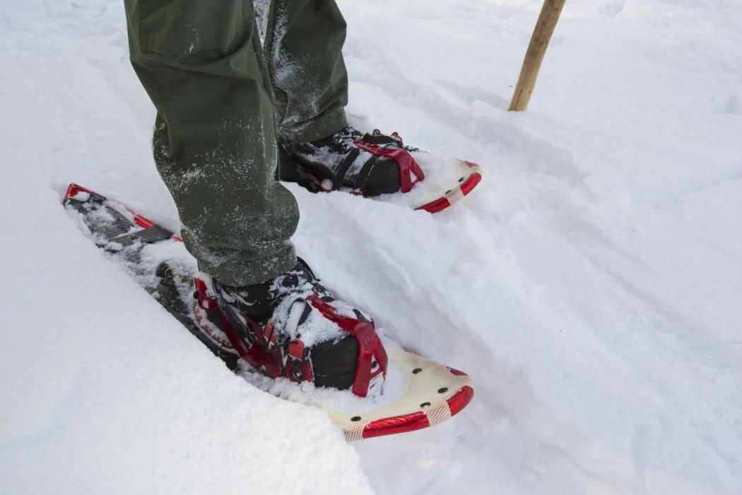 Photo of a Border Patrol agent's snowshoes