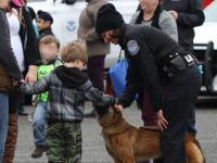 Young child petting a CBP canine.