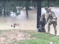 AMO agents rescue survivors