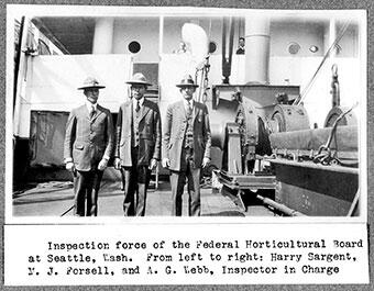 Inspection force of the Federal Horticultural Board at Seattle, Wash.