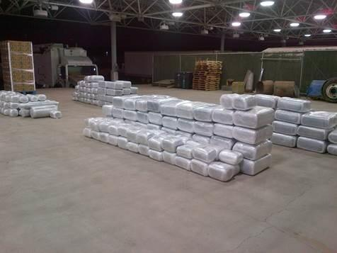 U.S. Customs and Border Protection Officers at the Calexico east commercial facility seized 491 packages containing 7,338 pounds of marijuana hidden in a shipment of green onions.