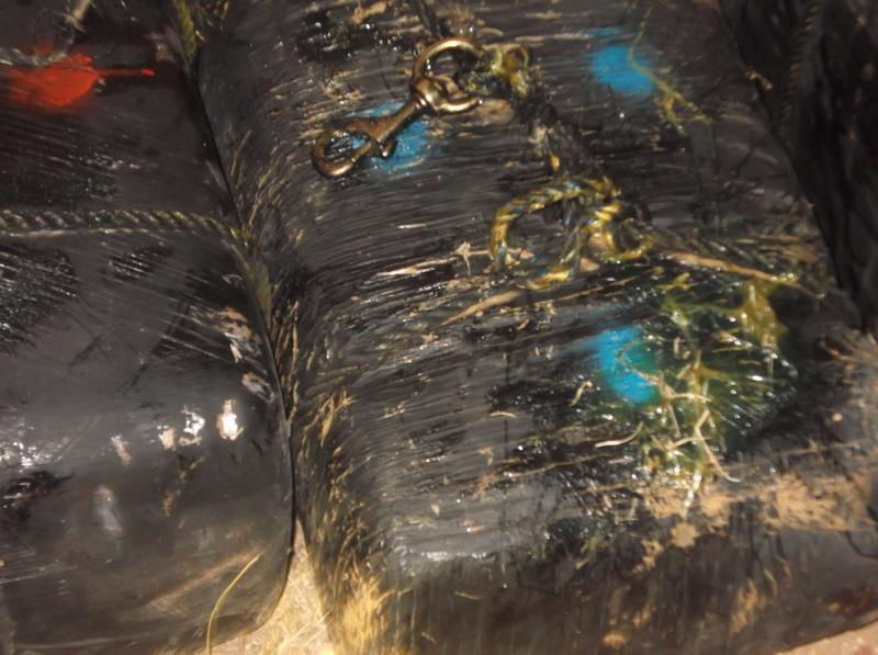 Douglas Station Border Patrol agents seized 10 bundles of marijuana and arrested one person involved in a cross-border zip line smuggling attempt Wednesday morning.