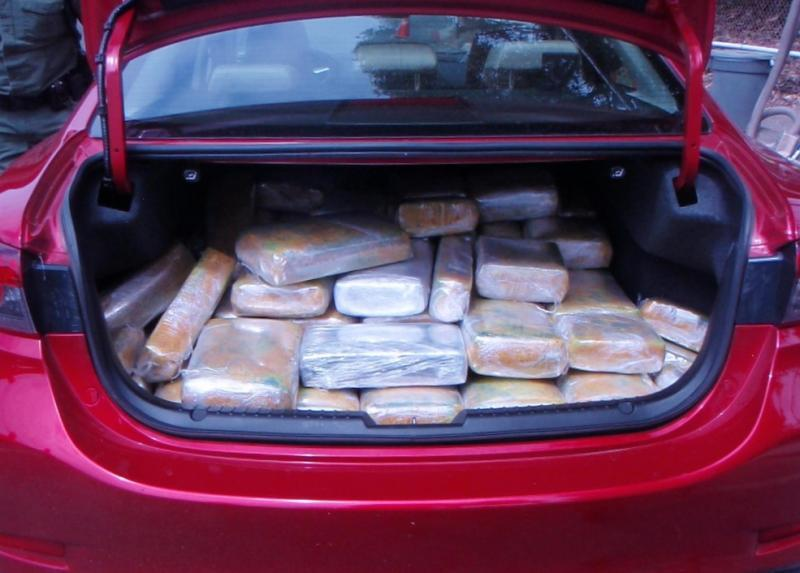 agents arrested a man who fled the I-5 checkpoint and had nearly 250 pounds of marijuana inside his car.