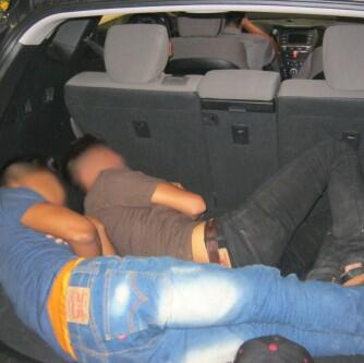 Two illegal aliens were hiding in the SUV's cargo area, three others were sitting in the rear seat.