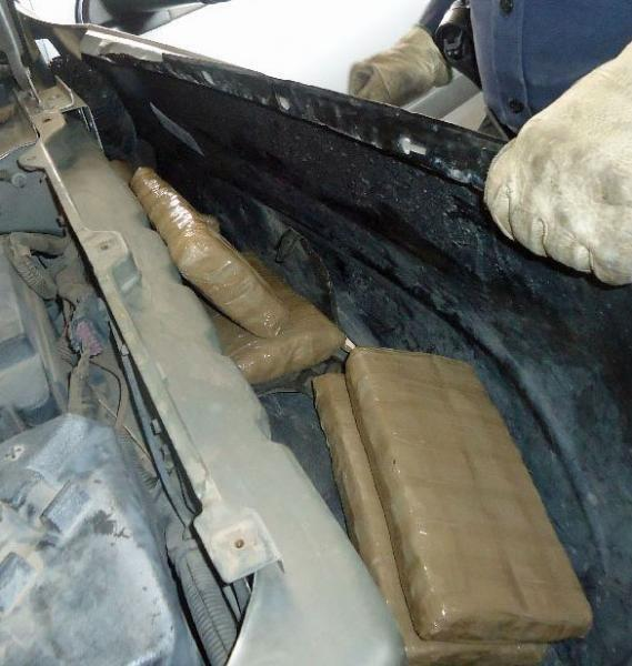 A CBP narcotics detection canine alerted officers to the locations of marijuana throughout a smuggling vehicle