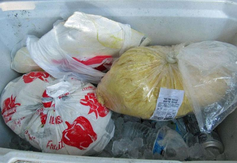 Officers at the Port of San Luis discovered two packages of unreported U.S. currency hidden within frozen packages of tortilla dough