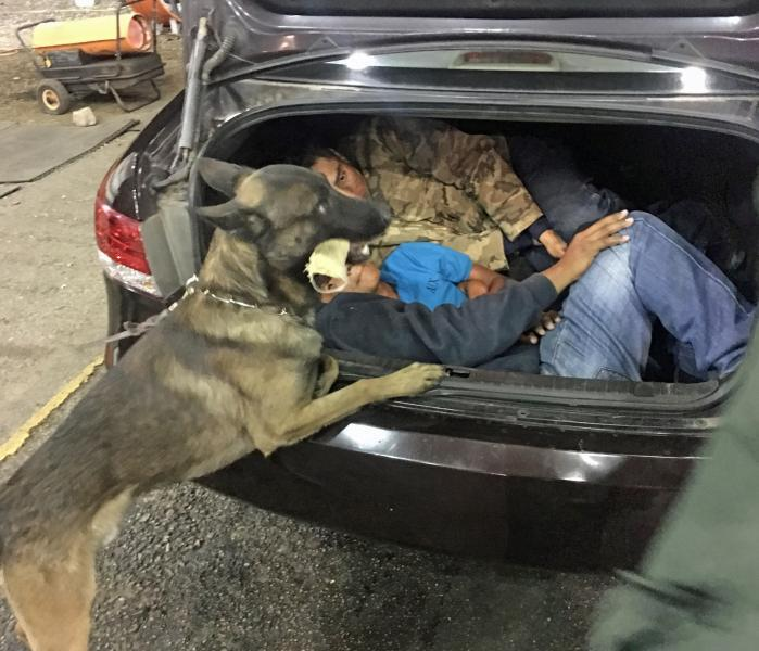 With the help of a Border Patrol canine, agents at the Interstate 19 traffic checkpoint located three Mexican nationals in the trunk of a vehicle that was stopped.