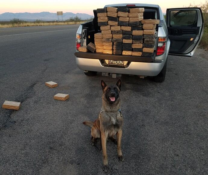 A Border Patrol canine alerted agents to a load of marijuana