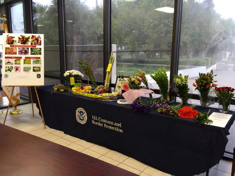 A display of prohibited flowers and greenery lines a table at an event advising of prohibited agricultural items in the approach to the Día de los Muertos (All Souls Day) holidays