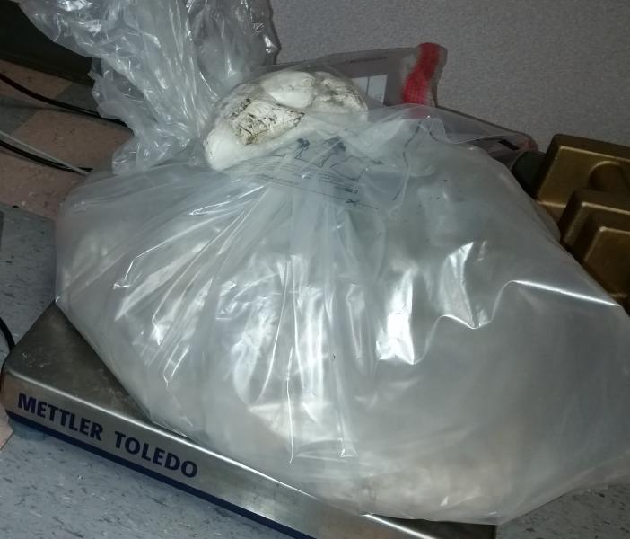Packages containing $319K in heroin and methamphetamine seized by CBP officers at Los Indios Bridge