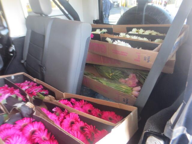 Commercial shipment of flowers seized at El Paso.