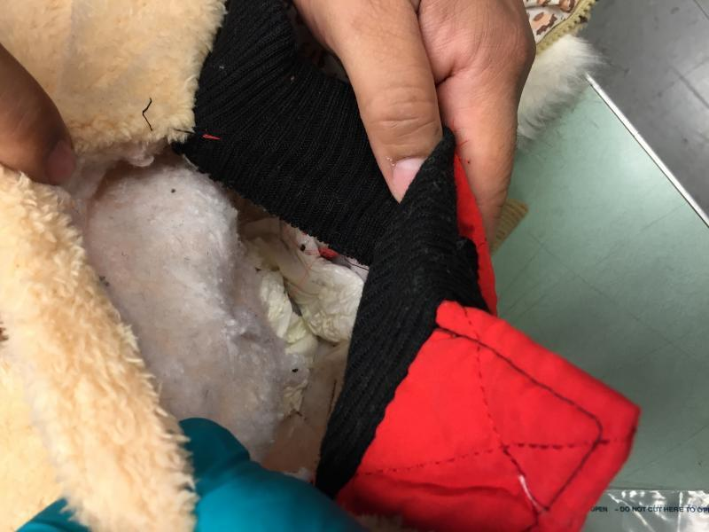 CBP officers found cocaine sewn in children's coats