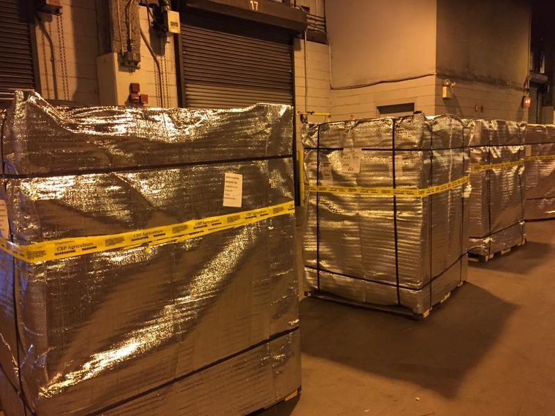 photo of the quarantined shipment