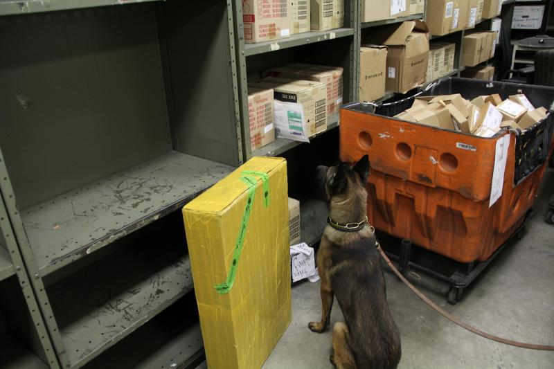 One of Chicago O'Hare's Narcotics Detection Dogs goes into a sit position after identifying a package that contains narcotics.
