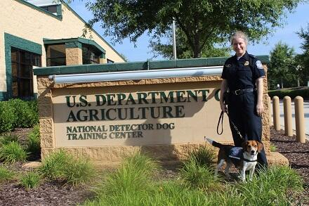 CBP Agriculture Specialist Thanuja Hall and Kingston at the National Detector Dog Training Center.