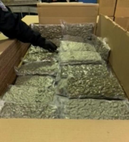 Marijuana seized at the Lewiston, N.Y. Cargo Facility.