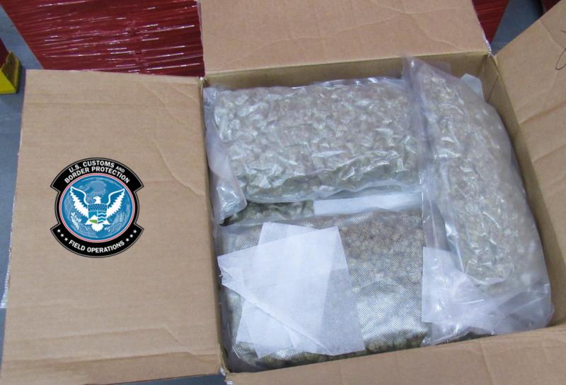 Vacuum-sealed packages of marijuana.