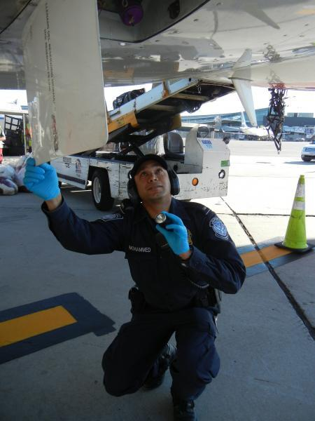 CBP Officer Shazard Mohammed checks a compartment beneath the belly of an aircraft.