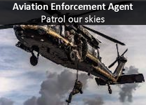 Air Enforcement Agent