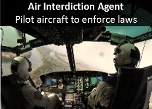 Air Interdiction Agent