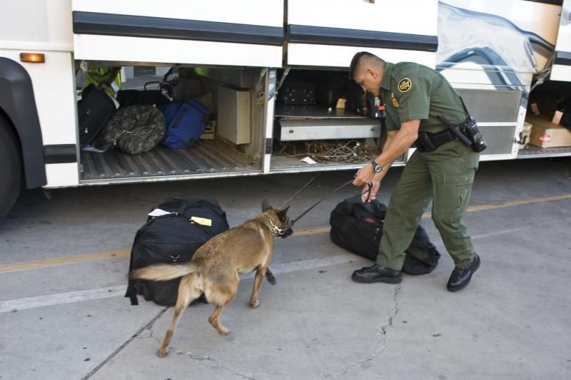 Image result for border patrol canine bus