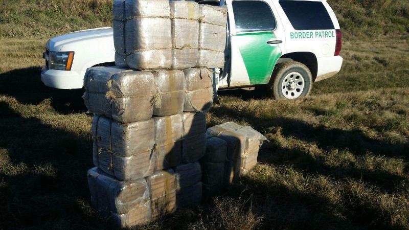 Multiple seizure net millions in marijuana