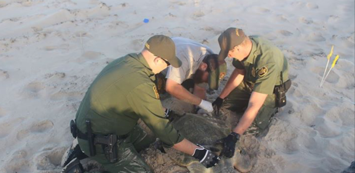 Border Patrol Agents and US Park Service rescue turtle