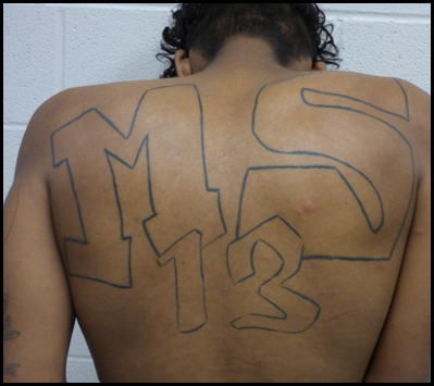 Gang member with MS 13 written on his back